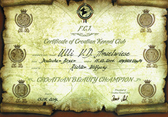 Champion-of-Croatia-Ulli