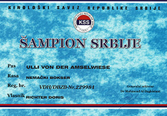 Champion-of-Serbia-Ulli